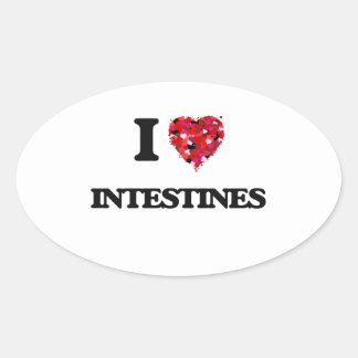 I love Intestines Oval Sticker