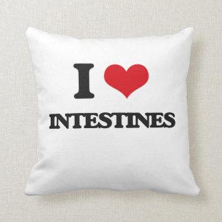 I love Intestines Pillows