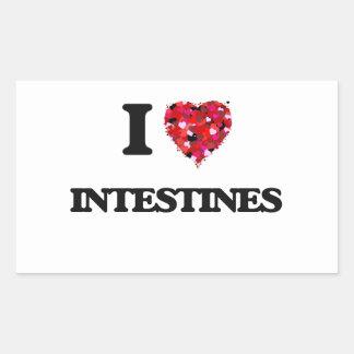 I love Intestines Rectangular Sticker