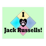 I Love Jack Russells Post Cards