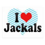 I Love Jackals Postcard