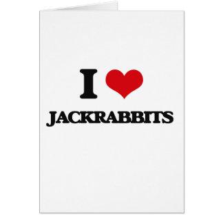 I love Jackrabbits Cards