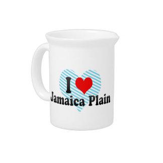 I Love Jamaica Plain, United States Beverage Pitcher