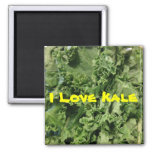 I Love Kale 2 Inch Square Magnet