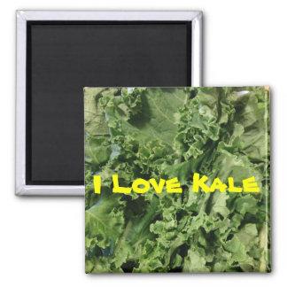 I Love Kale Magnet