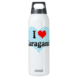 I Love Karagandy, Kazakhstan 16 Oz Insulated SIGG Thermos Water Bottle