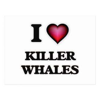 I Love Killer Whales Postcard