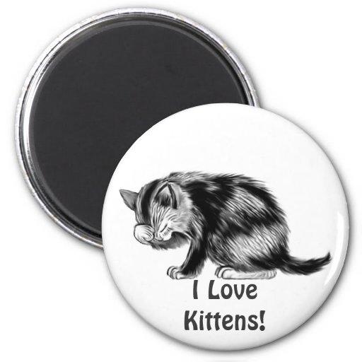 I Love Kittens Tabby Cat  Animal-lover Art Magnet