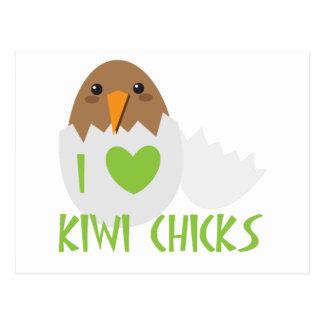 I love KIWI CHICKS with a kiwi New Zealand bird Postcard