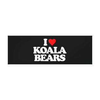I LOVE KOALA BEARS CANVAS PRINT
