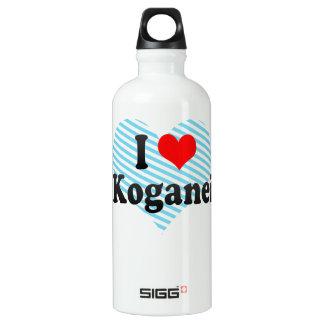 I Love Koganei, Japan. Aisuru Koganei, Japan Aluminum Water Bottle