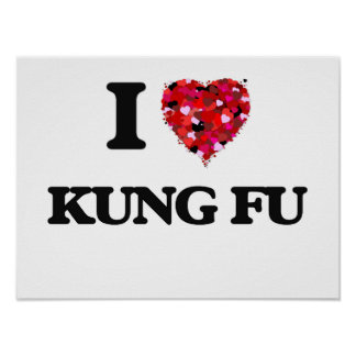 I Love Kung Fu Poster