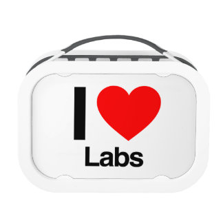 i love labs yubo lunchbox