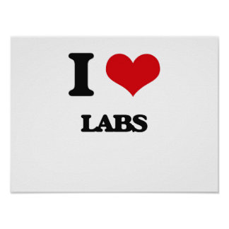 I Love Labs Poster