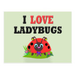 I Love Ladybugs Post Cards