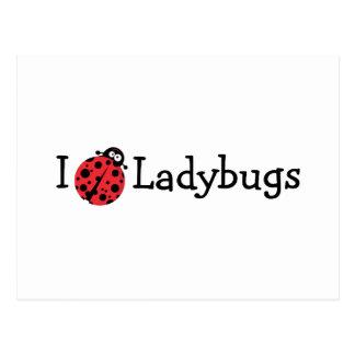 I Love Ladybugs Postcard