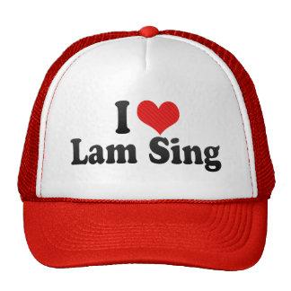 I Love Lam Sing Mesh Hats