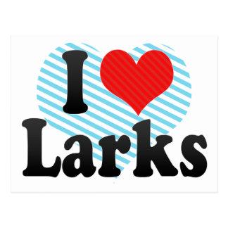 I Love Larks Postcard