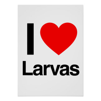 i love larvas print