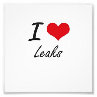 I Love Leaks Photo Print