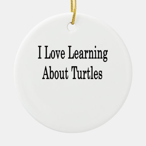 I Love Learning About Turtles Christmas Ornaments