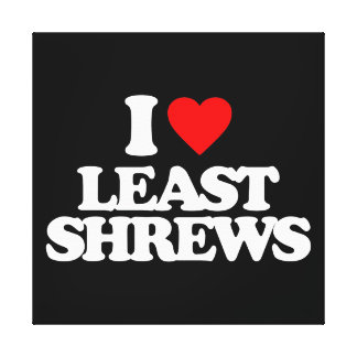 I LOVE LEAST SHREWS STRETCHED CANVAS PRINT