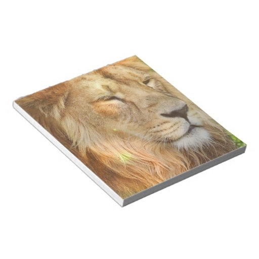 I Love Lions Notepad
