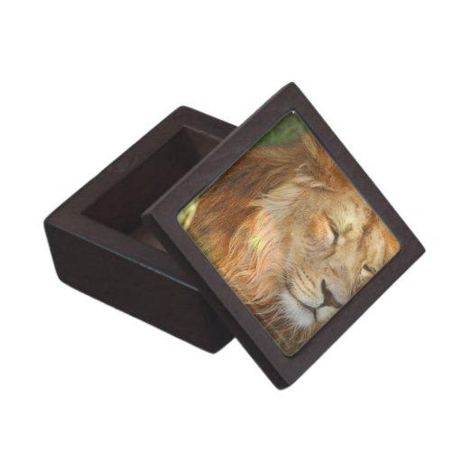 I Love Lions Premium Gift Box