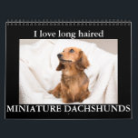 "I LOVE long haired MINIATURE DACHSHUNDS Calendar<br><div class=""desc"">Beautiful Doxie Pups in a variety of colors and patterns</div>"