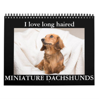 I LOVE long haired MINIATURE DACHSHUNDS Calendar