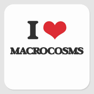I Love Macrocosms Square Stickers