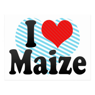 I Love Maize Postcard