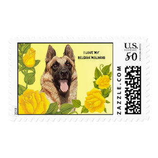 I Love Malinois & Yellow Roses Custom USA Postage