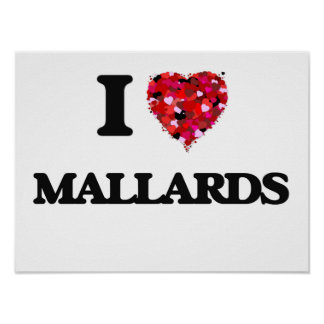 I Love Mallards Poster