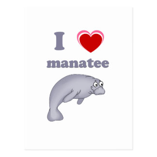I love manatee postcard