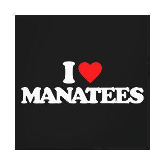 I LOVE MANATEES GALLERY WRAP CANVAS
