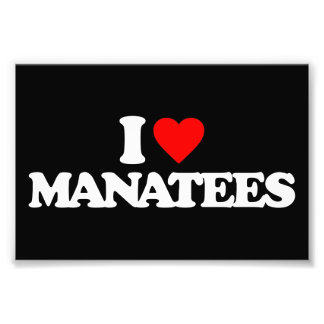 I LOVE MANATEES PHOTOGRAPHIC PRINT