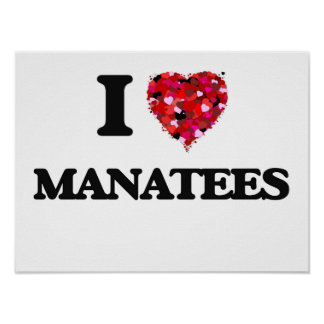 I love Manatees Poster