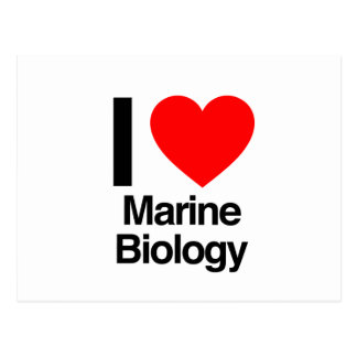 i love marine biology postcard