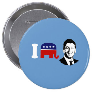 I Love Mark Sanford Pin
