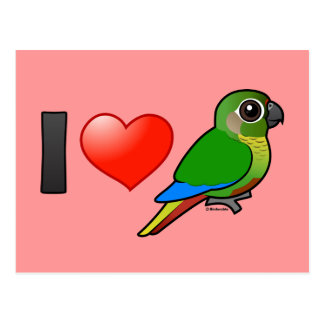 I Love Maroon-bellied Conures Postcard