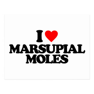 I LOVE MARSUPIAL MOLES POSTCARD