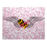 I Love Maryland -wings Post Card