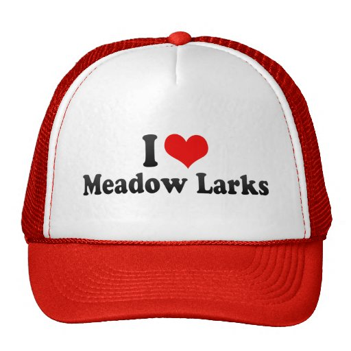 I Love Meadow Larks Trucker Hat
