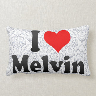 I love Melvin Pillows