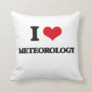 I Love Meteorology Throw Pillows