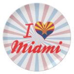I Love Miami, Arizona Plate