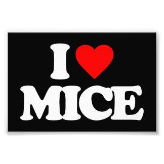 I LOVE MICE PHOTO