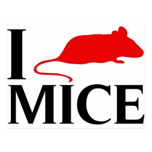 I Love Mice Post Card