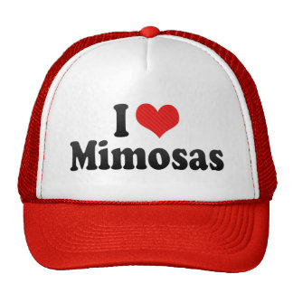 I Love Mimosas Hats